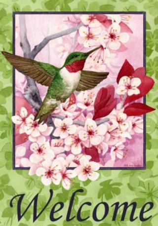 Floral Hummingbird
