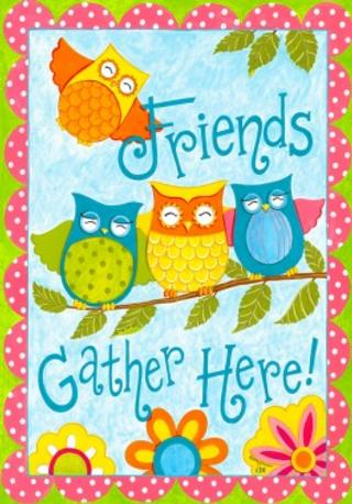 OwlFriends