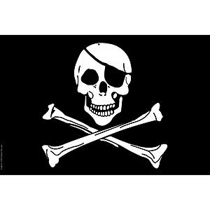 Jolly Rodgers Skull and Cross Bones 4x6 Decorative Desktop Flag